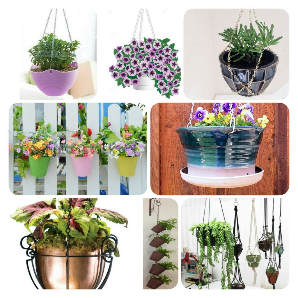 Hang up your plants